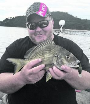 A winter Shoalhaven River bream on a Jackall chubby.