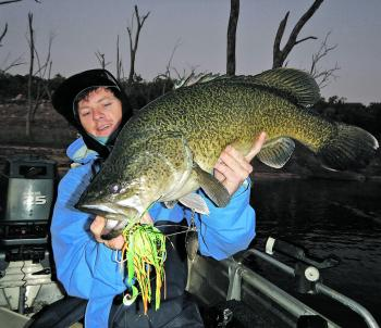 This awesome Copeton Dam cod was caught on a Westin Monster Vibe 65g spinnerbait.