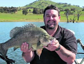 The author with his largest ever yellowbelly, trolled in Lake Hume last spring on a small deep diving hard body lure. This fish was released. Yellowbelly this size (60cm and approx. 12lb) are truly disgusting on the table. They have more fat than edible f