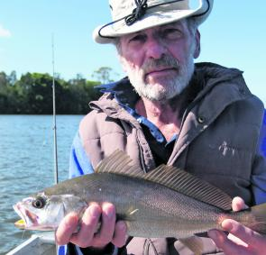 'You mean I have to let this fish go? It looks delicious!' Once-a-year Perth angler Frank Korzeniewszki comes to grips with an undersized mulloway in the Richmond River.