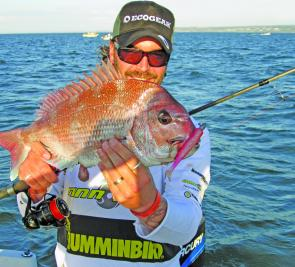 Plenty of smaller snapper are falling victim to soft plastics. The author caught this fish on the new Ecogear 5