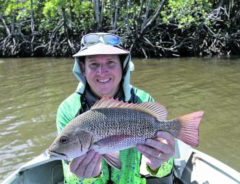 Mangrove jack are also booming as a result of healthier net free systems.